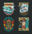 hawaii surfing vintage colorful emblems vector image vector image