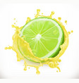 lime juice fresh fruit 3d icon vector image vector image