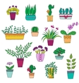Cute hand drawn flowers in the pots vector image
