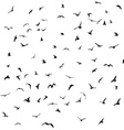 Birds gulls black silhouette on white background vector image vector image