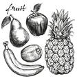 frui set pear apple banana kiwi pineapple hand vector image vector image