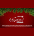 green christmas tree branches border on a white vector image vector image