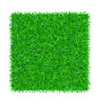 green grass square isolated on white background 3d vector image vector image