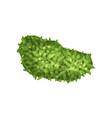 plant landscape natural design element top view vector image vector image