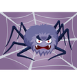 Spider on web vector image