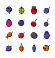 thin line berry icons set vector image