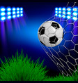 football with a ball in the stadium vector image