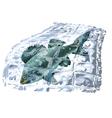 frozen fish vector image vector image