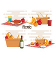 picnic party set products vector image