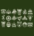 vintage cannabis and marijuana prints set vector image