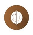 walnut flat design long shadow glyph icon vector image vector image