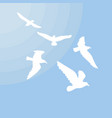 white gulls silhouettes concept vector image vector image