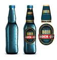 beer-mock-up-setblue bottle without a label vector image