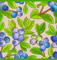 blueberry pattern on color background vector image vector image