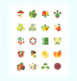 set of vegetarian organic food flat fruit vector image
