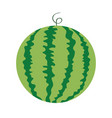 watermelon whole ripe green stem icon green red vector image vector image