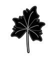 autumn leaf symbol vector image vector image