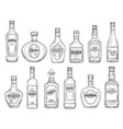 drinks and alcohol beverages sketch bottles vector image vector image