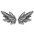 graphic detailed angel or bird wings vector image