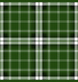green tartan plaid seamless pattern vector image vector image