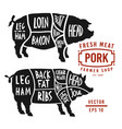meat cuts pork pig silhouette isolated vector image