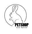 bunny hand draw pet shop concept vector image