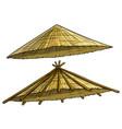 cartoon traditional asian conical rain hat vector image