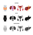 design of biology and scientific icon set vector image vector image