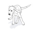 Drawing of running beagle with shadow on white vector image vector image
