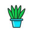 green indoor plant without bloom in clay pot vector image vector image