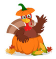 turkey sitting in a pumpkin and waving his wing on vector image
