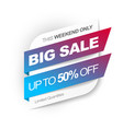 big sale save up to 50 percent off vector image