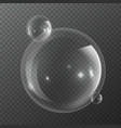 bubble molecules macro fresh bubbly nature vector image vector image