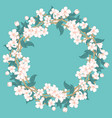 cherry blossom round pattern on blue turquoise vector image vector image