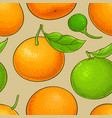mandarin fruits pattern on color background vector image vector image