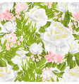 seamless texture floral with white roses vector image