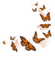 beautiful butterfly flying in a circle background vector image vector image