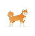 cute akita inu - modern cartoon characters vector image