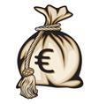 Euro Money Bag vector image vector image