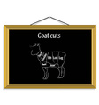 Goat cuts vector image vector image