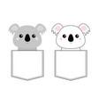 koala bear set head face sitting in pocket vector image vector image