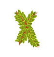 letter x english alphabet made of tree branches vector image