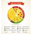 Pizzeria hot pizza fresh ingredients infographics vector image