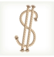 Rope dollar vector image vector image