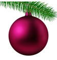 rose matte christmas ball or bauble and fir branch vector image vector image
