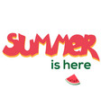 summer is here watermelon vector image vector image