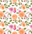 Seamless pattern pink roses vector image