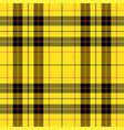 4645 - scottish cage tartan pattern vector image vector image