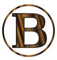 beta greek letter vector image vector image