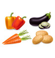 carrot pepper and aubergine set realistic vector image vector image